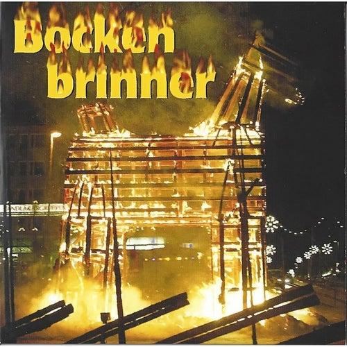 Play & Download Bocken Brinner by Mr. M. | Napster