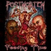 Feeding Time by Postmortem