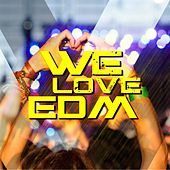 Play & Download We Love EDM by Various Artists | Napster