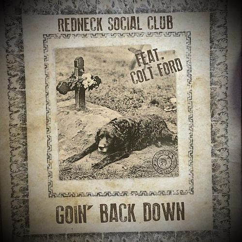 Play & Download Goin' Back Down (feat. Colt Ford) by Redneck Social Club | Napster