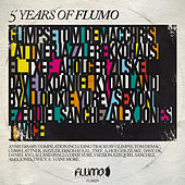 Play & Download Flumo 020: 5 Years of Flumo by Various Artists | Napster