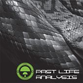 Past Life Analysis by Various Artists