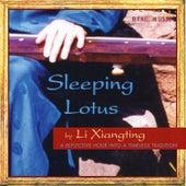 Sleeping Lotus by Li Xiangting