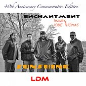 Play & Download Sunshine (40th Anniversary Commemorative Edition) (feat. Jobie Thomas) by Enchantment | Napster