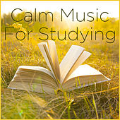Calm Music for Studying and Focus Music by Calm Music for Studying