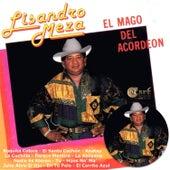 El Mago del Acordeon by Lisandro Meza
