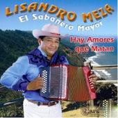 Play & Download Hay Amores Que Matan by Lisandro Meza | Napster