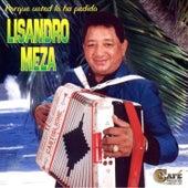 Play & Download Porque Usted Lo Ha Perdido by Lisandro Meza | Napster
