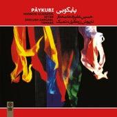 Paykubi by Hossein Alizadeh