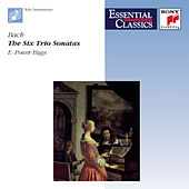 Play & Download Essential Classics - Bach: Six Trio Sonatas by E. Power Biggs | Napster