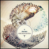 Play & Download Orchestrates by Freak Owls | Napster