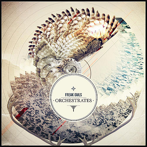 Orchestrates by Freak Owls