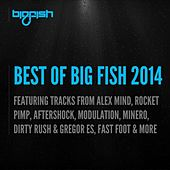 Best of Big Fish 2014 by Various Artists