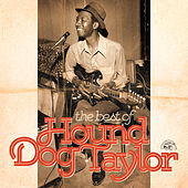 Play & Download The Best Of Hound Dog Taylor by Hound Dog Taylor | Napster