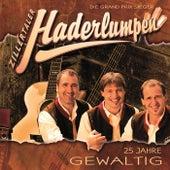 Play & Download Gewaltig 25 Jahre by Zillertaler Haderlumpen | Napster