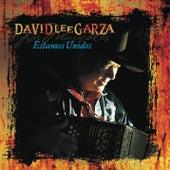 Estamos Unidos by David Lee Garza