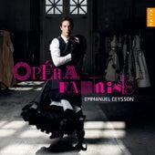 Opéra fantaisies by Emmanuel Ceysson