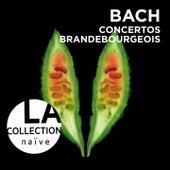 Play & Download Bach: Brandenburg Concertos by Rinaldo Alessandrini | Napster