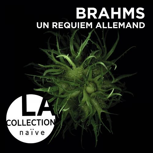 Brahms: Ein Deutsches Requiem by Laurence Equilbey
