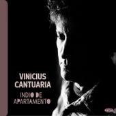 Indio de Apartamento by Vinícius Cantuária