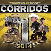 Play & Download Corridos #1´s 2014 by Various Artists | Napster