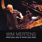 Play & Download What You See Is What You Hear by Wim Mertens | Napster