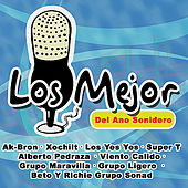 Los Mejor Del Ano Sonidero by Various Artists