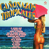 Play & Download Cañonazos Tropicales by Various Artists | Napster