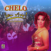 Play & Download Chelo - En Vivo by Chelo | Napster