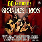 60 Éxitos de Grandes Tríos by Various Artists