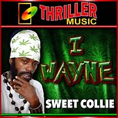 Play & Download Sweet Collie by I Wayne | Napster