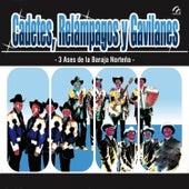 Exitazos de Cadetes, Relampagos y Gavilanes by Various Artists