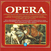 Play & Download Opera - Vol. 6 by Various Artists | Napster