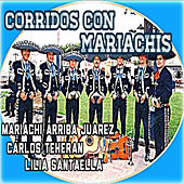 Play & Download Corridos Con Mariachis by Various Artists | Napster