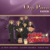 Oro Puro: Exitos by Sabor Sonidero