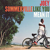 Like You Mean It by Joey Sommerville