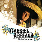 Play & Download Volvió El Gallo by Gabriel Arriaga | Napster
