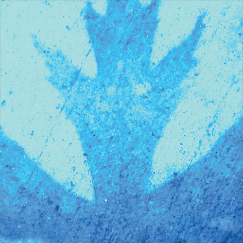 January Blue by Robert Bitte