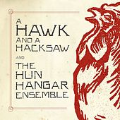 Play & Download A Hawk And A Hacksaw And The Hun Hangár Ensemble by A Hawk and a Hacksaw | Napster