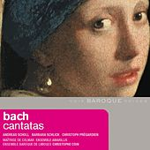 Play & Download Bach: Cantatas by Various Artists | Napster