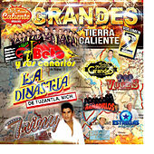 Play & Download Grandes de Tierra Caliente, Vol. 2 by Various Artists | Napster