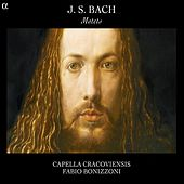 Play & Download J.S. Bach: Motets by Capella Cracoviensis | Napster