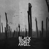 Verdun: Prayer Sodden Holes / Tears Strike the Mile High Gong / Creeping Barrage by Black Boned Angel