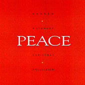 Peace by Darren Motamedy