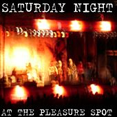 Saturday Night At The Pleasure Spot by Various Artists