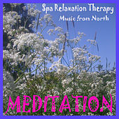 Play & Download Meditation and Yoga by Various Artists | Napster