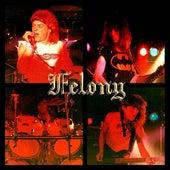 Felony by Felony