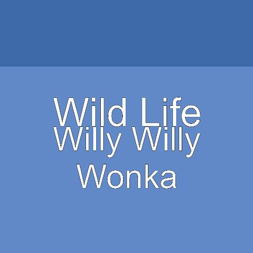 Play & Download Willy Willy Wonka by Big Talk | Napster