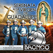 Play & Download Serenata a la Virgen de Guadalupe by Bronco | Napster