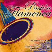 Play & Download Pasión Flamenca by Various Artists | Napster